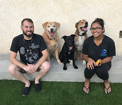 Happy Trained Dogs Canoga Park