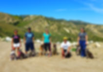 Dog Obedience Classes San Fernando Valley