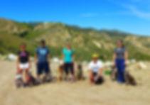 Dog Obedience Classes San Fernando Valley