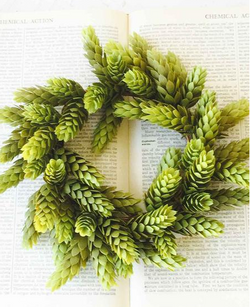 hops wreath - 8in