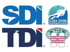 tdi_sdi_logo.jpg