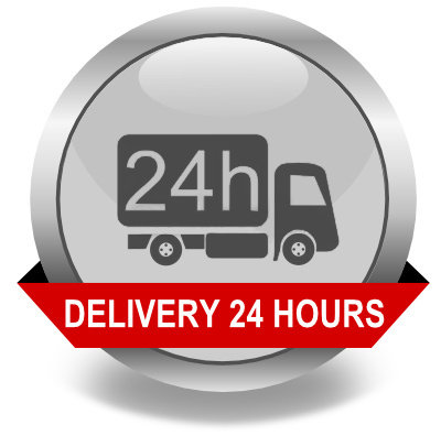 EXPRESS DELIVERY 24HOUR SERVICE