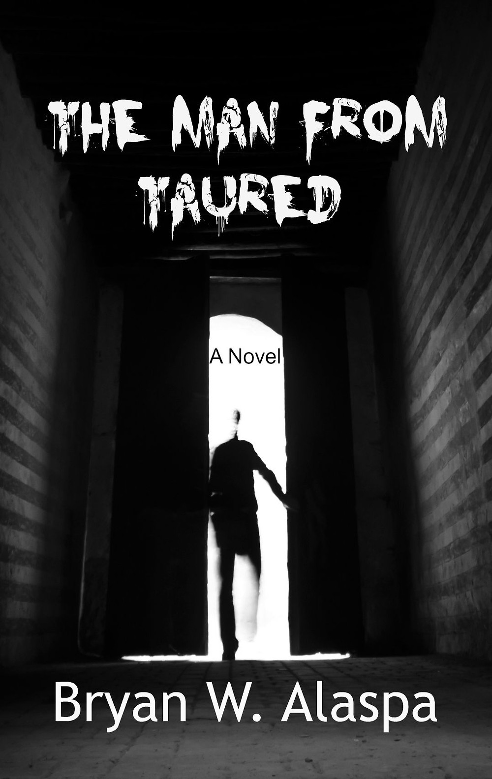 The Man From Taured book cover