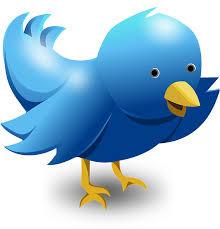 WRITING TIPS: Using Twitter