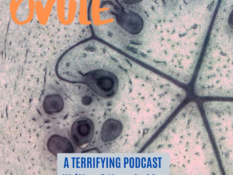 All 10 episodes of Ovule are out!