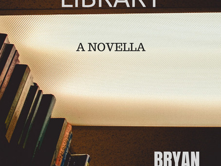 What is a novella?