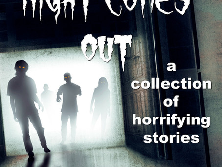 Excerpt: When the Night Comes Out