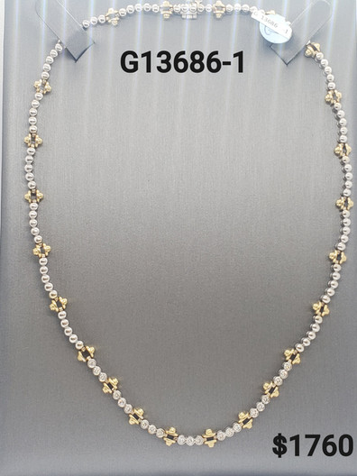 G13686-1.jpg