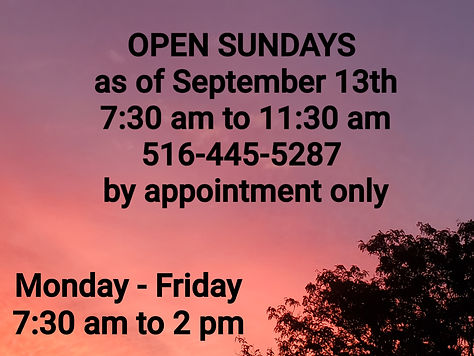 Open Sundays.jpg