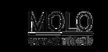 cropped-MOLO-LOGO.png