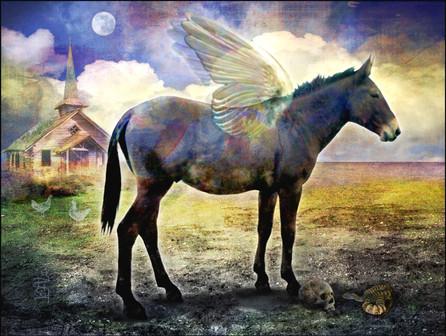 Pegasus Mule, 2015