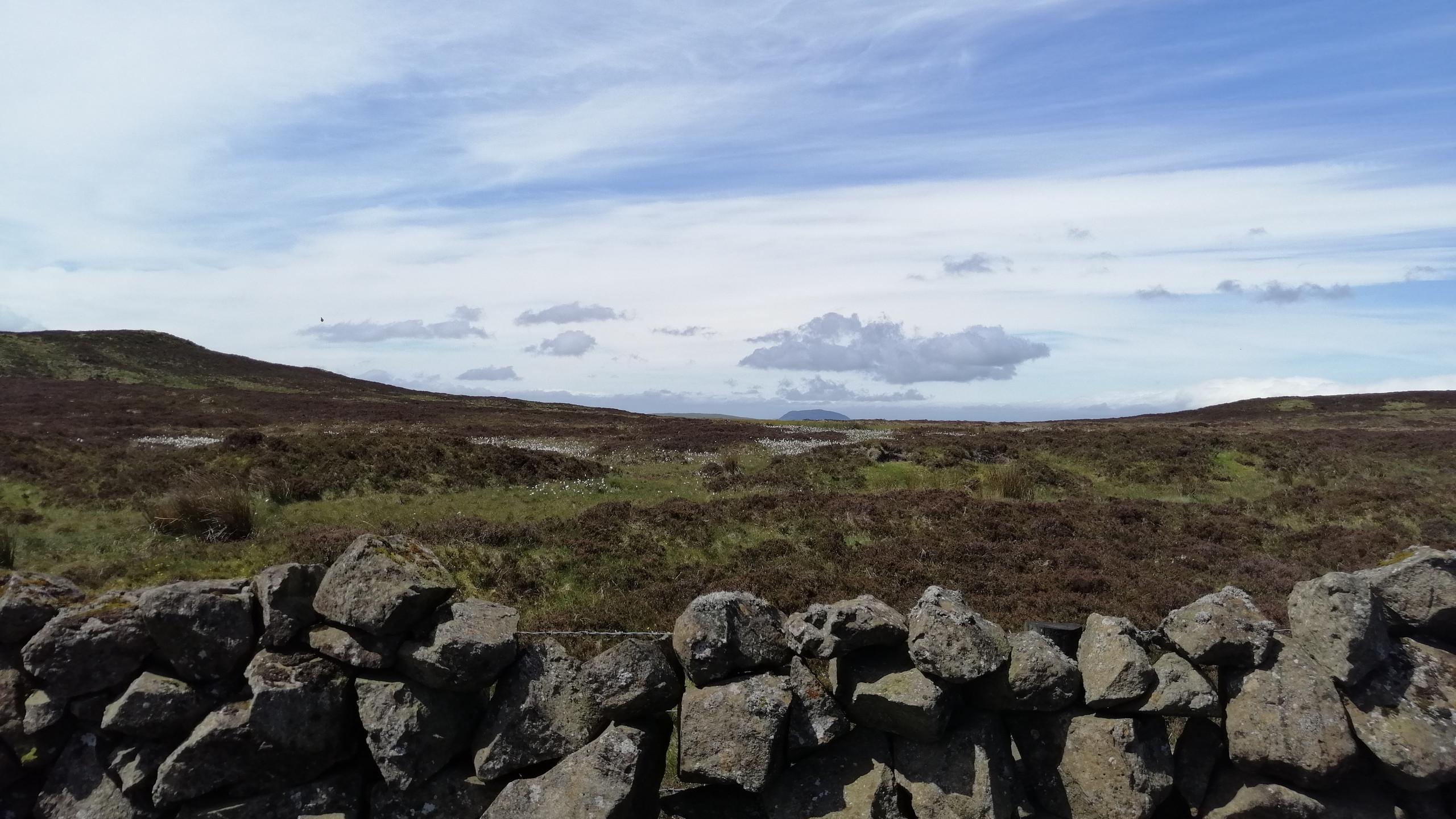 Heath Land over Sallagh Hill