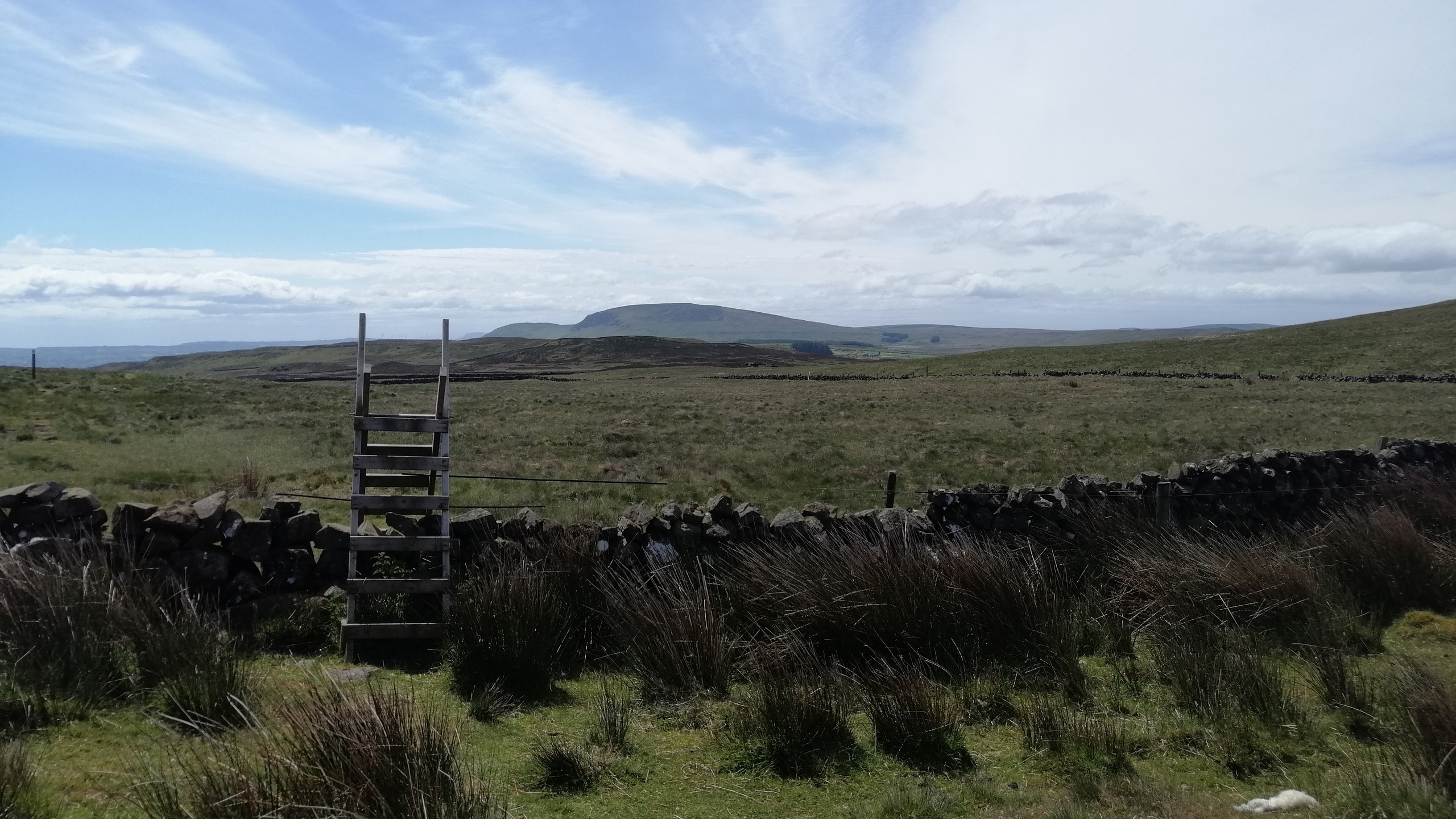 View of Slemish From Sallagh