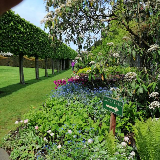 Glenarm Castle Gardens13