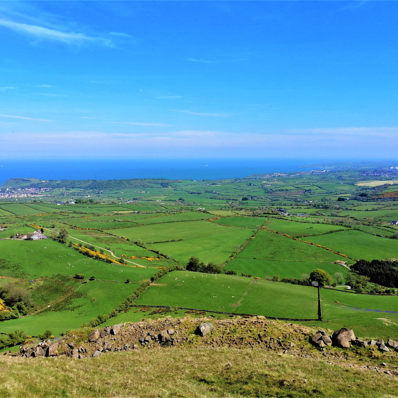 Ballygally from Sallagh Braes