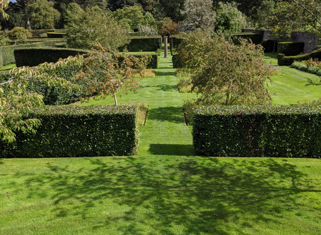 Early Autumn in Glenarm Castle Gardens.