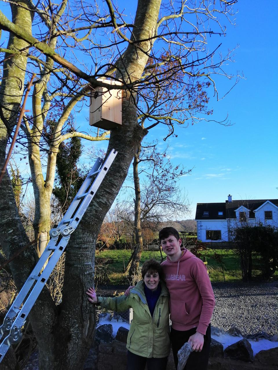 Owl Nesting Box1