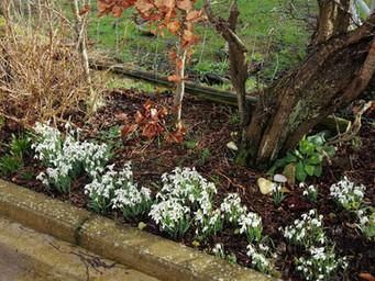 Spring has Sprung at BallyCairn!