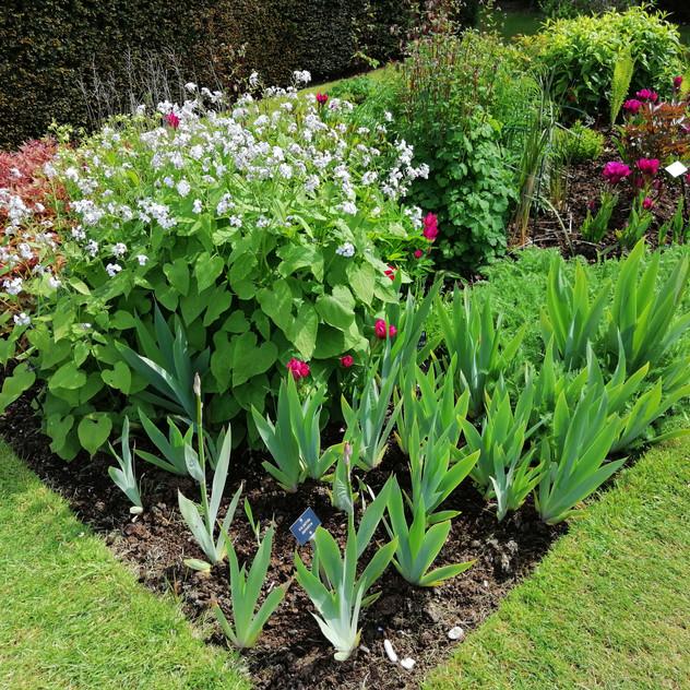 Glenarm Castle Gardens