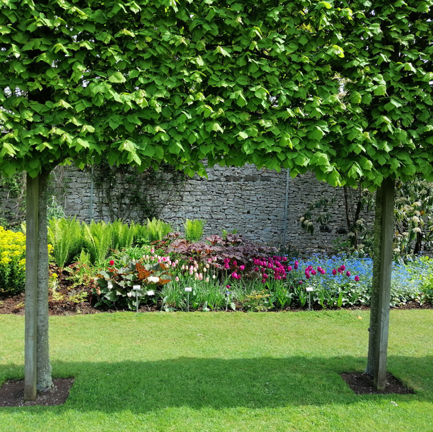 Glenarm Castle Gardens14