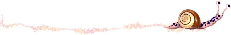 Pink Snail-26.png