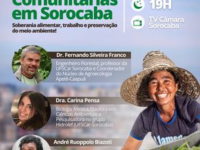 Hortas comunitárias: vereadora Fernanda realizará audiência pública para discutir o tema