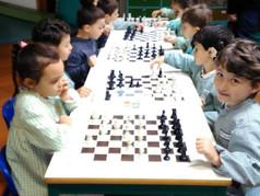 Sensibilização ao Xadrez