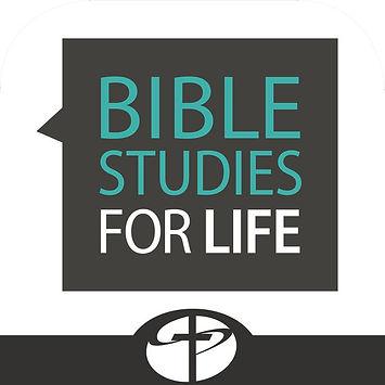 bible studies for life.jpg