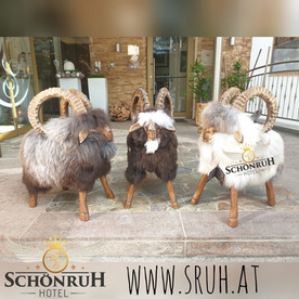 sruh sheeps.jpg