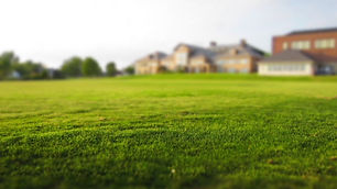artificial-grass-turf-pros-cons-pexels-f