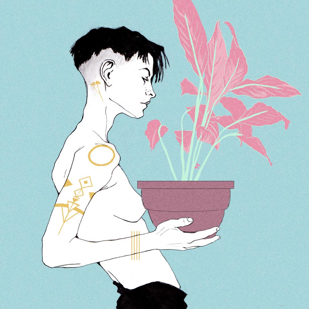 plantats.jpg