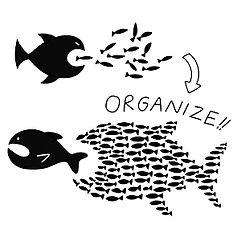 Organize!.jpg