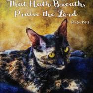 Praise the Lord - kitty version.jpg