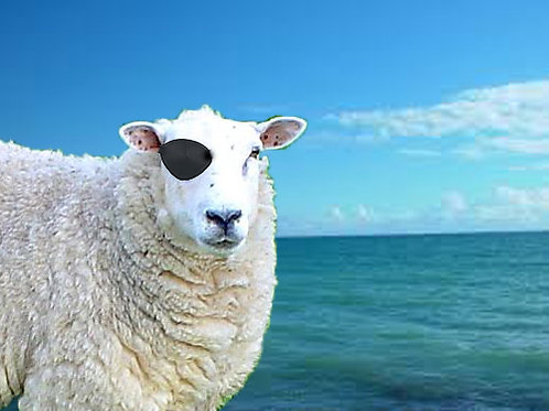 Sheep in the Sea - vowel sounds for Italian speakers