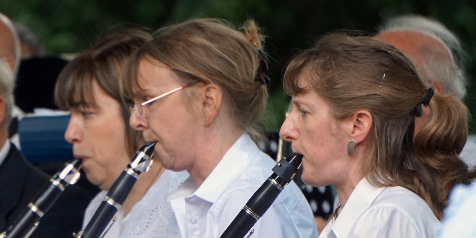 Clarinet players