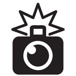 camera-with-flash-01.jpg