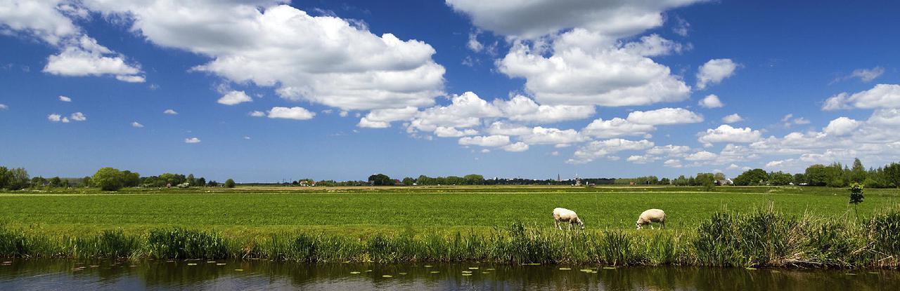 Noord-Holland_Zon