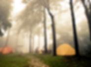 Foggy Campsite_edited.jpg