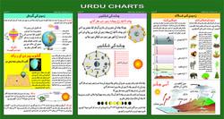 Urdu charts for web site