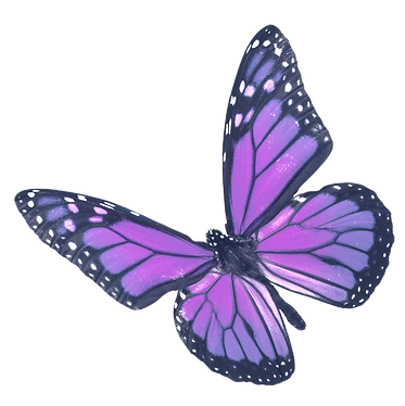 307-3075000_purple-butterfly-purple-and-