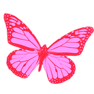 png-clipart-mariposas-pink-and-black-but