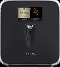 plum wine.png