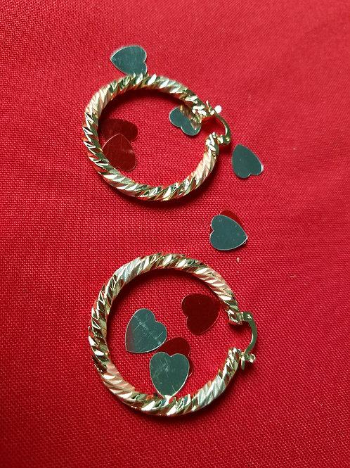 Stainless Steel hoop earrings med