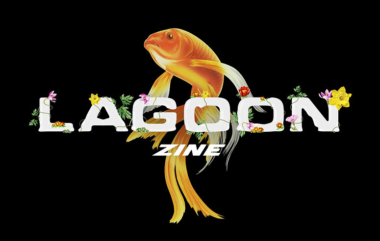 Lagoon banner.jpg