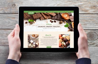 עיצוב אתר - כרמית