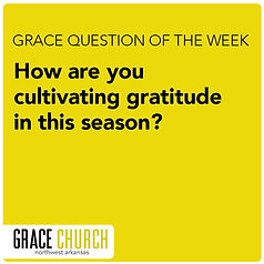 question of the week.jpg