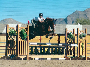 Vallecito Sport Horses training and lessons