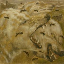 Marina Bastianello Gallery
