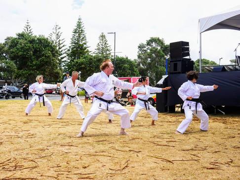 Boulevard Arts Fiesta Demo