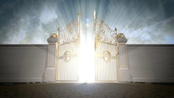 NIGGAZ WHO ROBBED HEAVEN